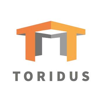 Toridus s.r.o. - stavební firma Třemošná, Plzeň